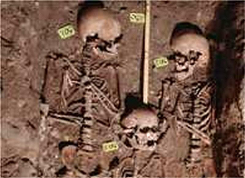 Wie Skelette Auskunft über vergangene Zeiten geben
