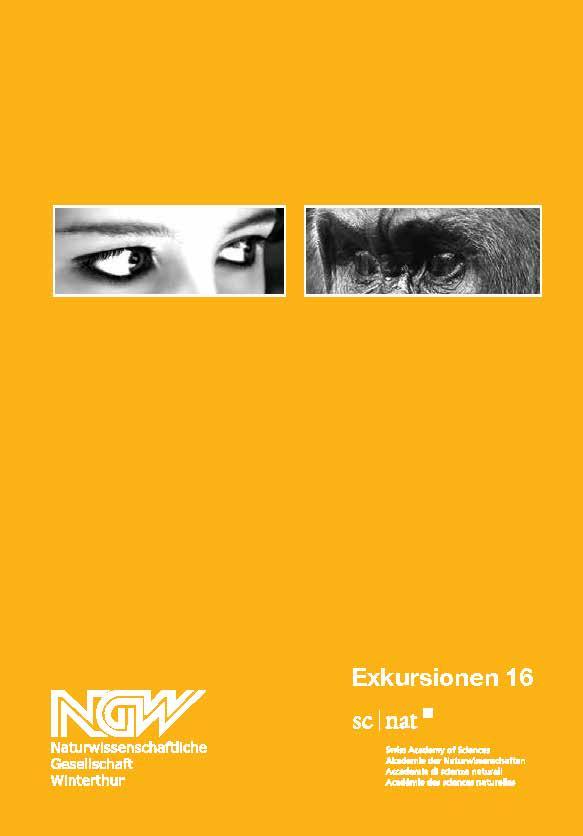 sommerprogramm16_web
