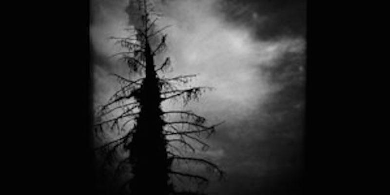 Depression als Störung von Gleichgewichten – Biologische und psychosoziale Aspekte einer Volkskrankheit