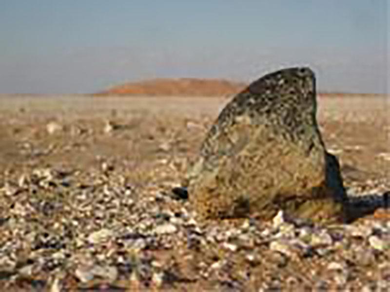 Die Nadel im Heuhaufen – Wie man Meteoriten findet und was sie bedeuten