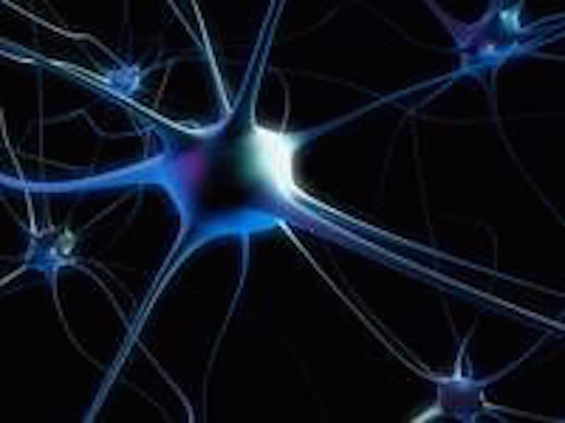 Gehirnentwicklung in der Lebensspanne – Oder warum das Gehirn im Alter in Vielem besser wird