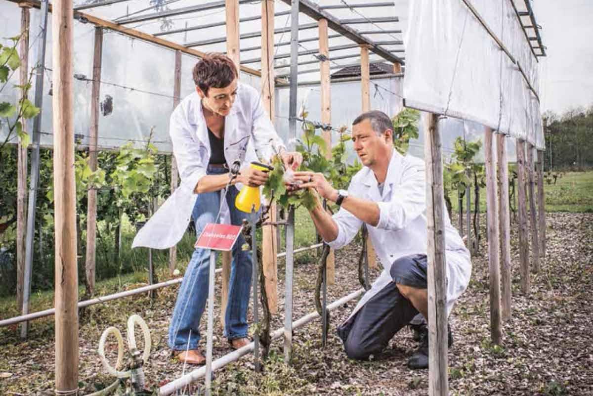 Forschen für besseres Essen – Forschungsstandort Reckenholz