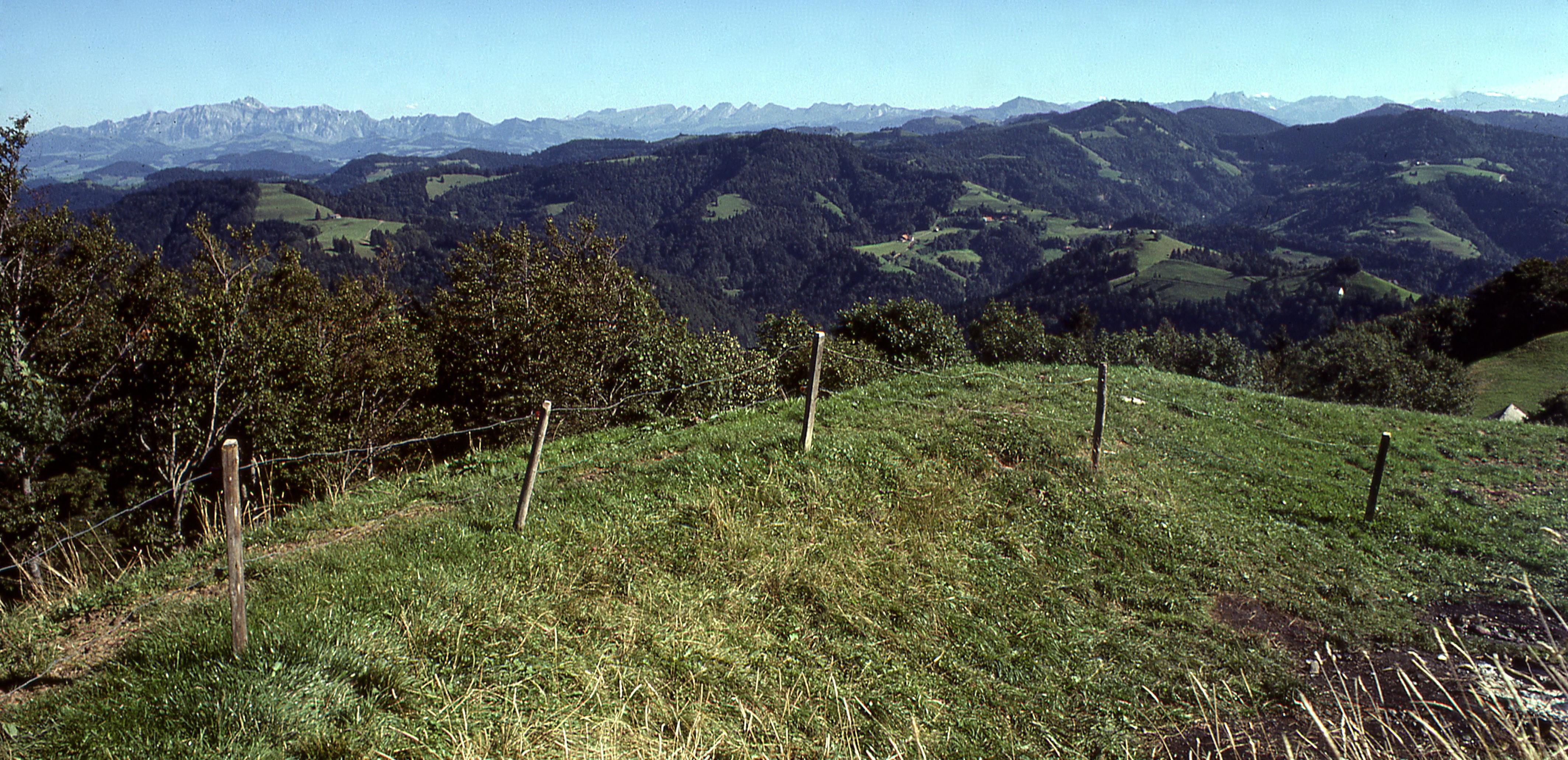 Das Hörnli- oder Tössbergland: Wie die Natur die Landschaft schuf und ihre Entwicklung prägte